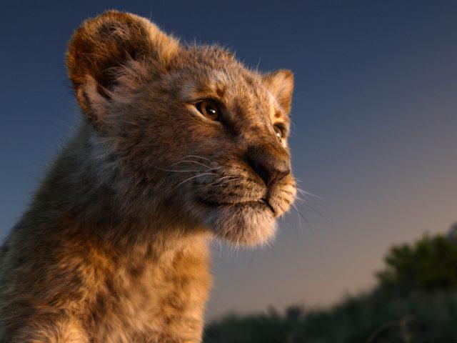 Imagen de El rey leon pelicula animada taquillera